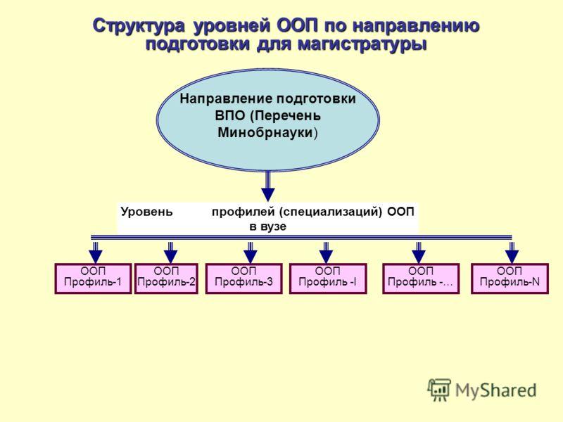 Структура уровней ООП по направлению подготовки для магистратуры Направление подготовки ВПО (Перечень Минобрнауки) ООП Профиль-1 ООП Профиль-3 ООП Профиль -I ООП Профиль -… Уровень профилей (специализаций) ООП в вузе ООП Профиль-2 ООП Профиль-N