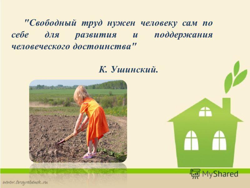 Свободный труд нужен человеку сам по себе для развития и поддержания человеческого достоинства К. Ушинский.
