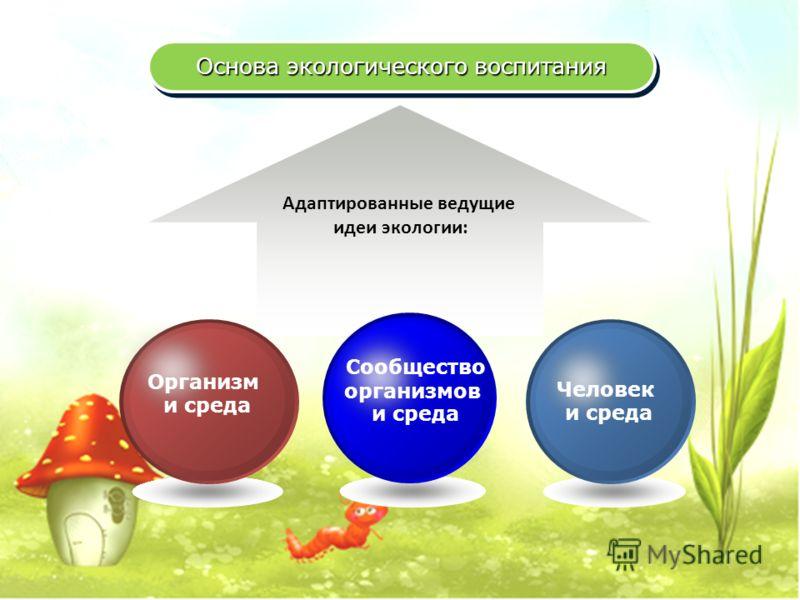 Основа экологического воспитания Адаптированные ведущие идеи экологии: Человек и среда Сообщество организмов и среда Организм и среда