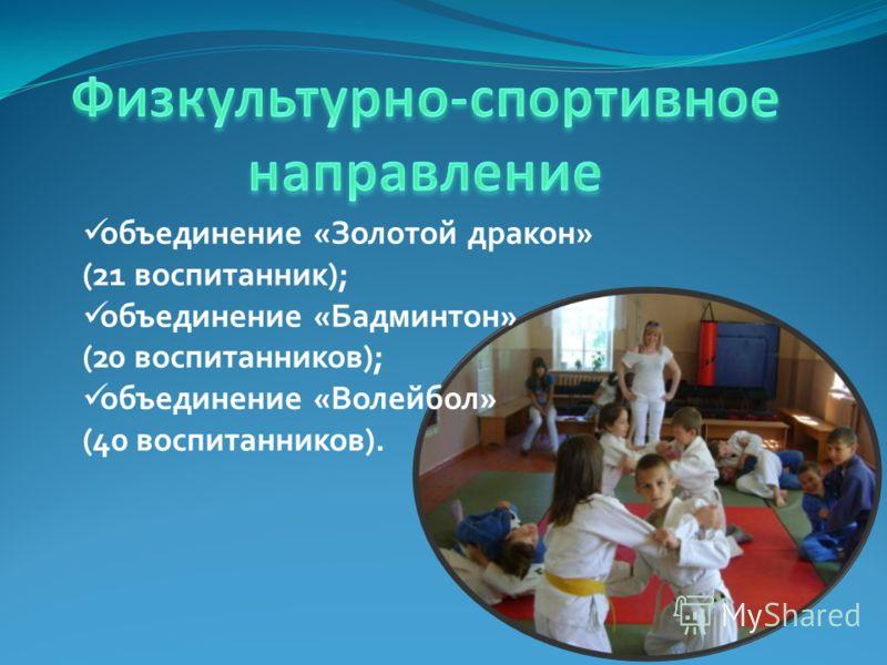 объединение «Золотой дракон» (21 воспитанник); объединение «Бадминтон» (20 воспитанников); объединение «Волейбол» (40 воспитанников).