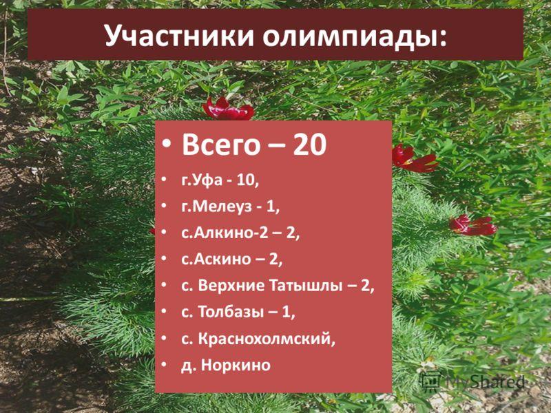 Участники олимпиады: Всего – 20 г.Уфа - 10, г.Мелеуз - 1, с.Алкино-2 – 2, с.Аскино – 2, с. Верхние Татышлы – 2, с. Толбазы – 1, с. Краснохолмский, д. Норкино