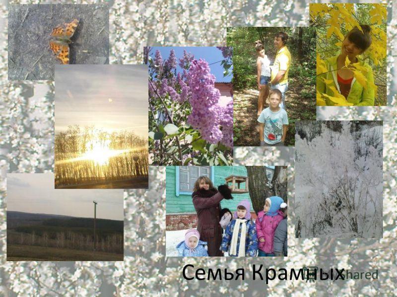 Семья Крамных