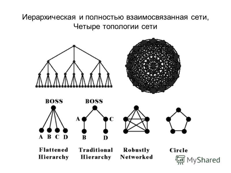 Иерархическая и полностью взаимосвязанная сети, Четыре топологии сети