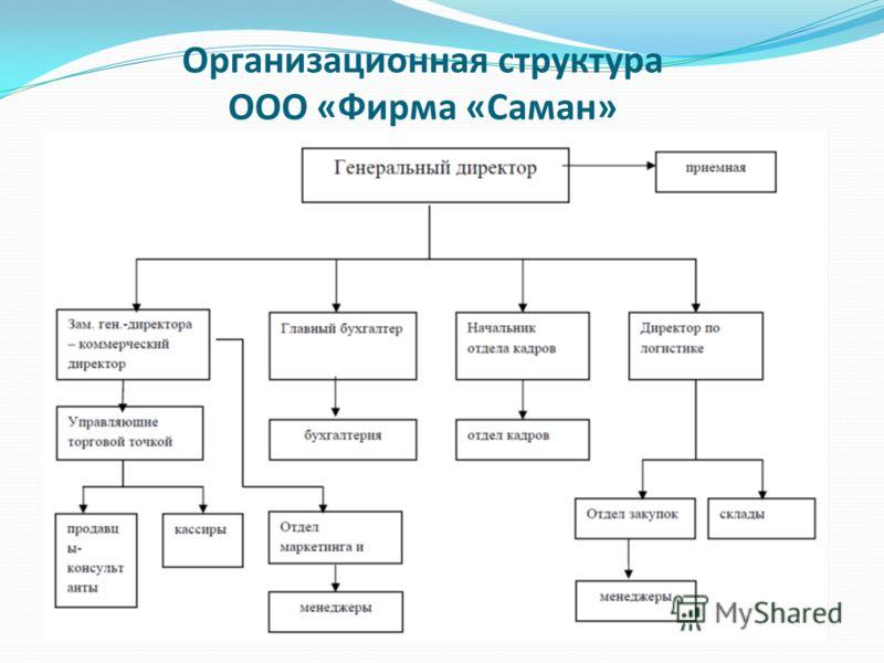 Организационная структура ООО «Фирма «Саман»