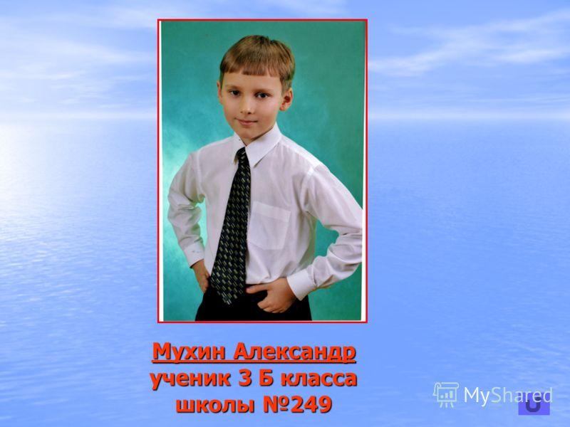 Мухин Александр Мухин Александр ученик 3 Б класса школы 249 Мухин Александр