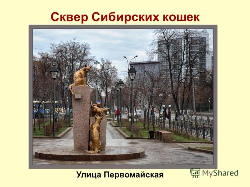 Сквер Сибирских кошек Улица Первомайская