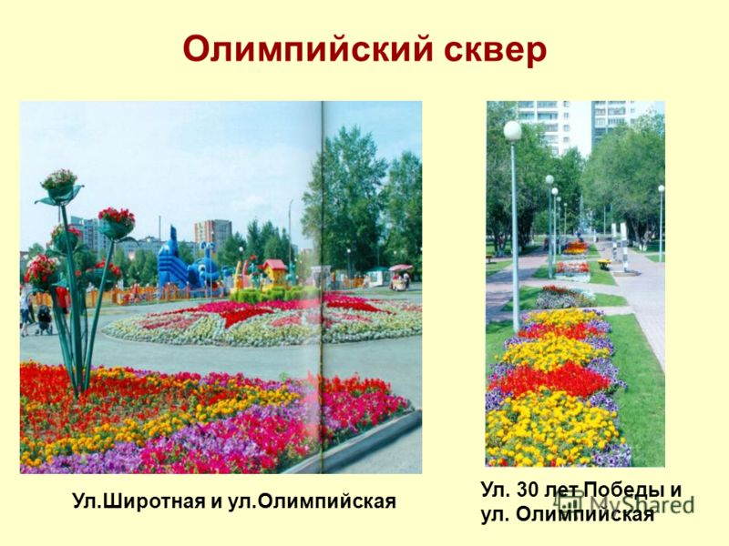 Олимпийский сквер Ул.Широтная и ул.Олимпийская Ул. 30 лет Победы и ул. Олимпийская