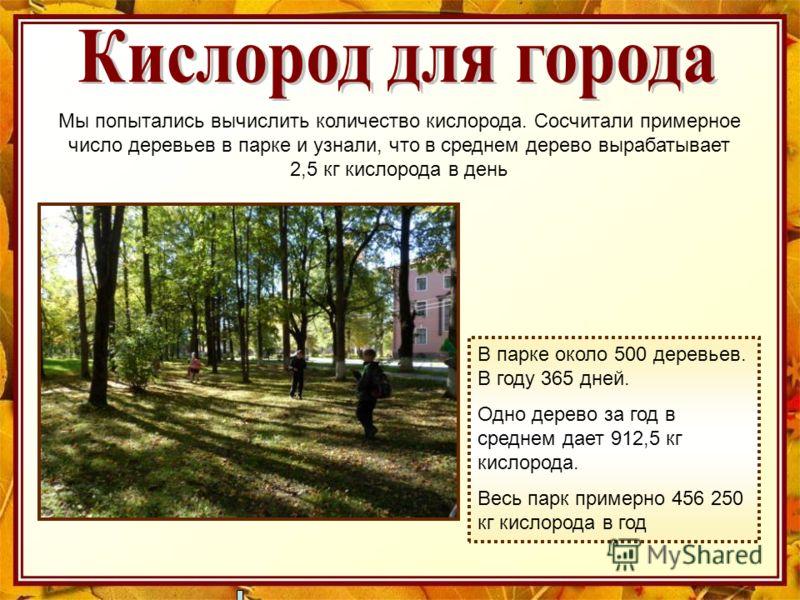 Мы попытались вычислить количество кислорода. Сосчитали примерное число деревьев в парке и узнали, что в среднем дерево вырабатывает 2,5 кг кислорода в день В парке около 500 деревьев. В году 365 дней. Одно дерево за год в среднем дает 912,5 кг кисло