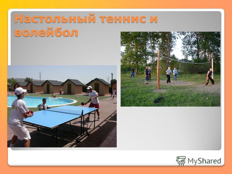 Настольный теннис и волейбол