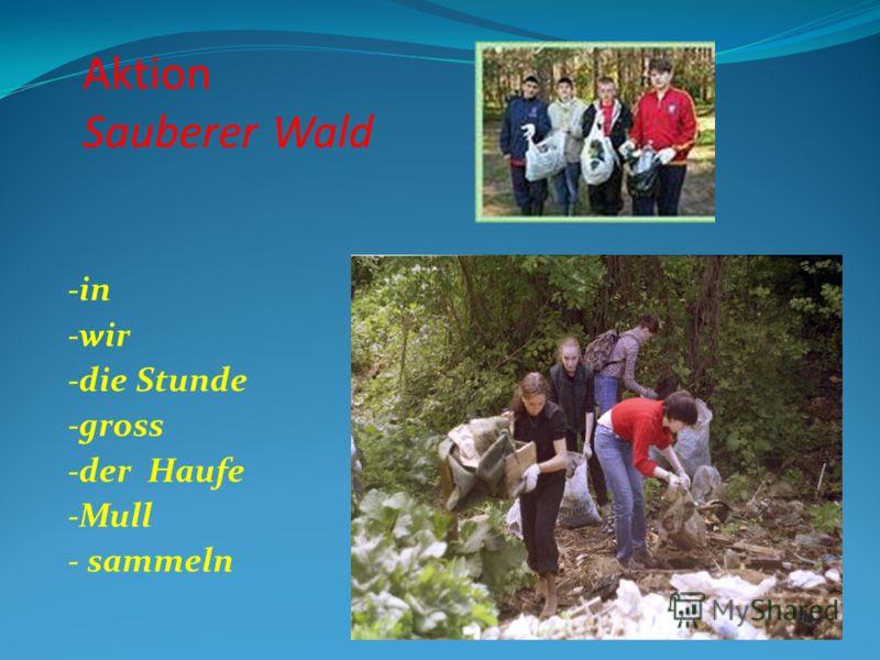 Aktion Sauberer Wald -in -wir -die Stunde -gross -der Haufe -Mull - sammeln