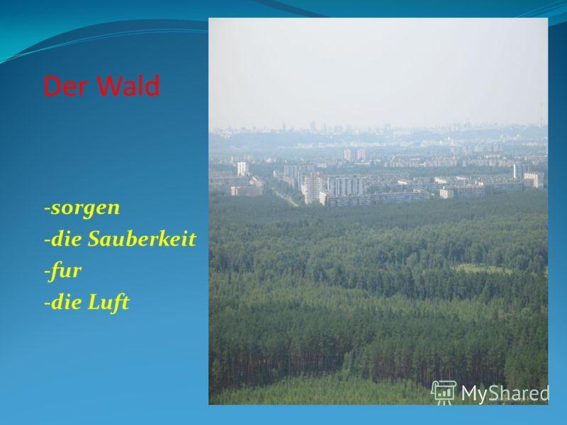 Der Wald -sorgen -die Sauberkeit -fur -die Luft