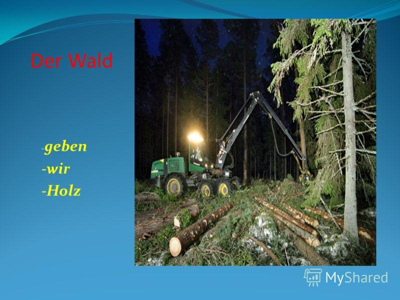 Der Wald - geben -wir -Holz