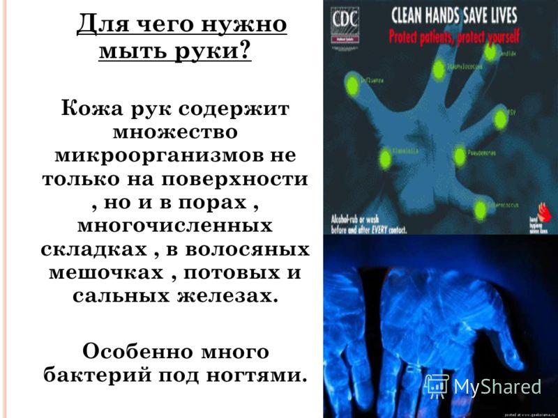 Для чего нужно мыть руки? Для чего нужно мыть руки? Кожа рук содержит множество микроорганизмов не только на поверхности, но и в порах, многочисленных складках, в волосяных мешочках, потовых и сальных железах. Особенно много бактерий под ногтями. Осо