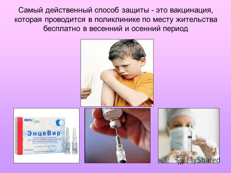 Самый действенный способ защиты - это вакцинация, которая проводится в поликлинике по месту жительства бесплатно в весенний и осенний период