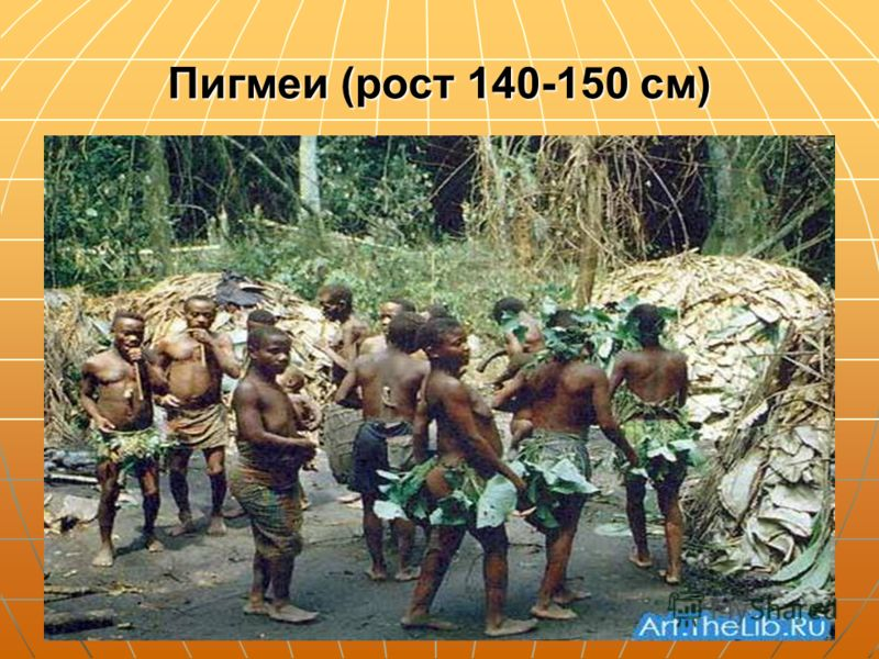 Пигмеи (рост 140-150 см)