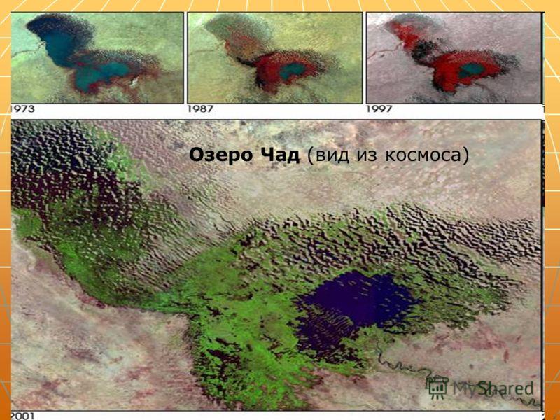 Озеро Чад (вид из космоса)