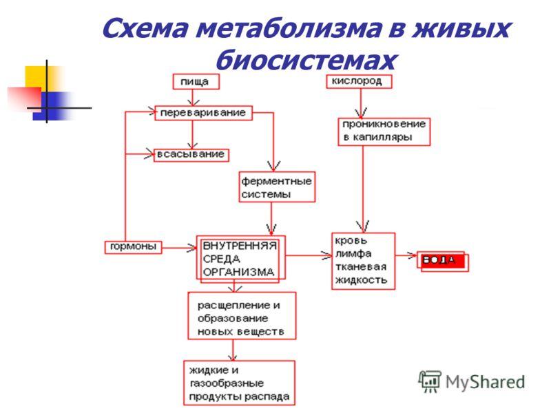 Вода как катализатор OH H 2 O 6 HOOC CH 2 C CH 2 COOH +3 Na 2 CO 3 COOH лимонная кислота OH 6NaOOC CH 2 C CH 2 COONa + 3CO 2 COONa