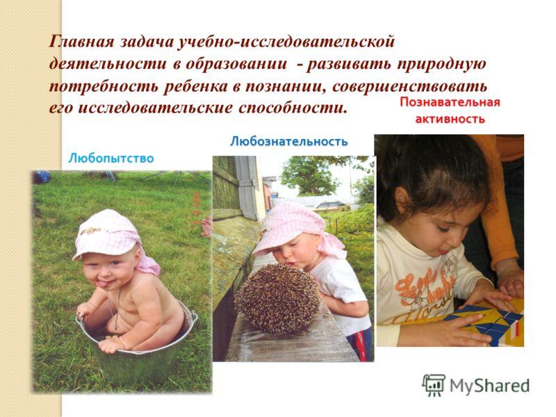 Главная задача учебно-исследовательской деятельности в образовании - развивать природную потребность ребенка в познании, совершенствовать его исследовательские способности. ЛюбопытствоЛюбознательность Познавательная активность