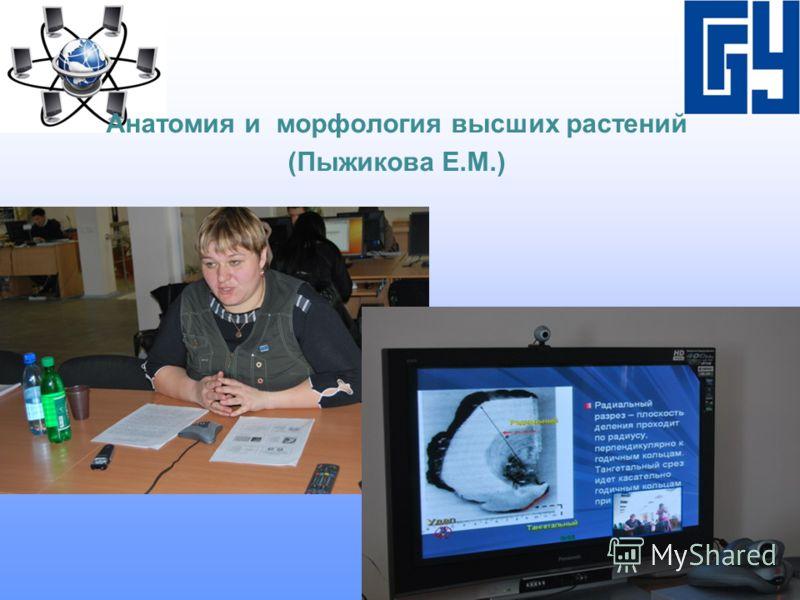 Анатомия и морфология высших растений (Пыжикова Е.М.)