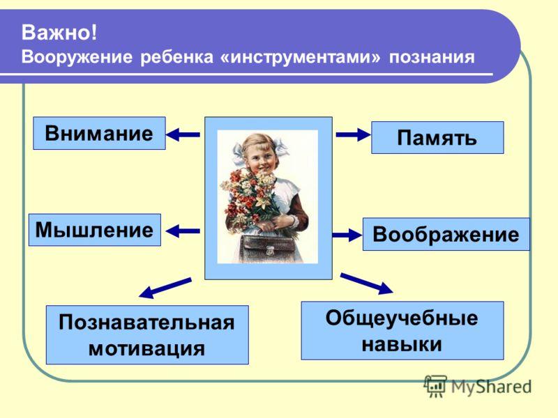 Внимание Память Воображение Мышление Общеучебные навыки Познавательная мотивация Важно! Вооружение ребенка «инструментами» познания