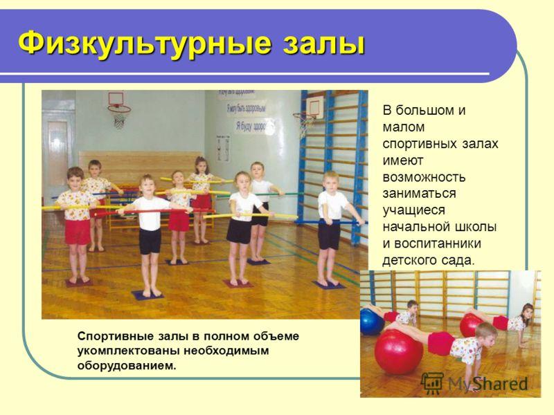 Физкультурные залы В большом и малом спортивных залах имеют возможность заниматься учащиеся начальной школы и воспитанники детского сада. Спортивные залы в полном объеме укомплектованы необходимым оборудованием.