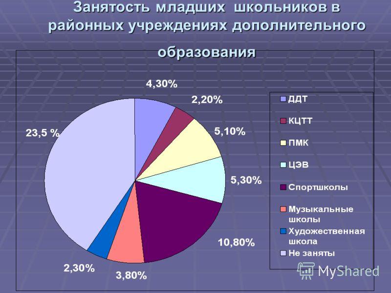Занятость младших школьников в районных учреждениях дополнительного образования