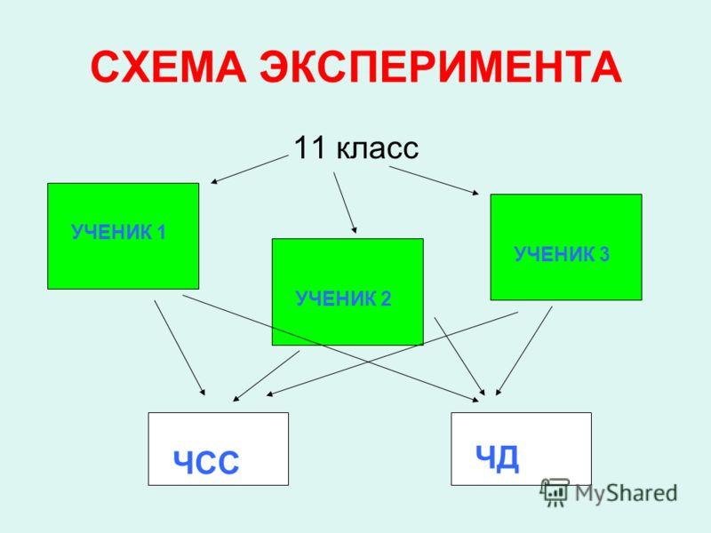 СХЕМА ЭКСПЕРИМЕНТА 11 класс УЧЕНИК 1 УЧЕНИК 2 УЧЕНИК 3 ЧСС ЧД