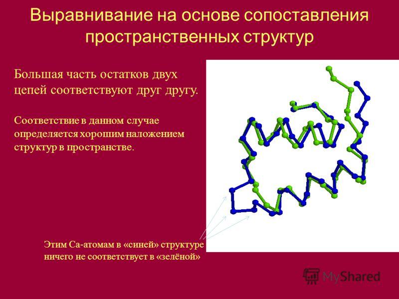 Выравнивание на основе сопоставления пространственных структур Этим Ca-атомам в «синей» структуре ничего не соответствует в «зелёной» Большая часть остатков двух цепей соответствуют друг другу. Соответствие в данном случае определяется хорошим наложе