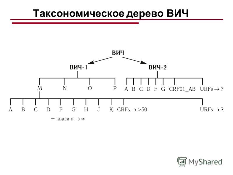 Таксономическое дерево ВИЧ