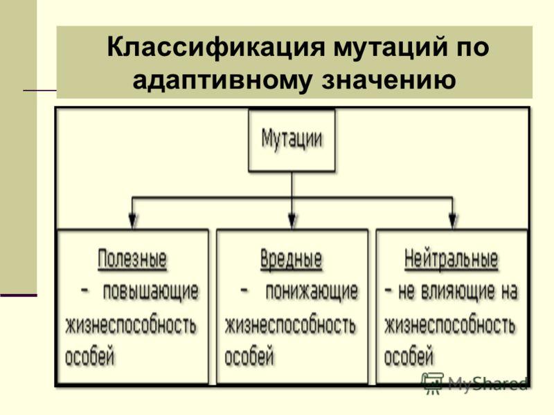 Классификация мутаций по адаптивному значению