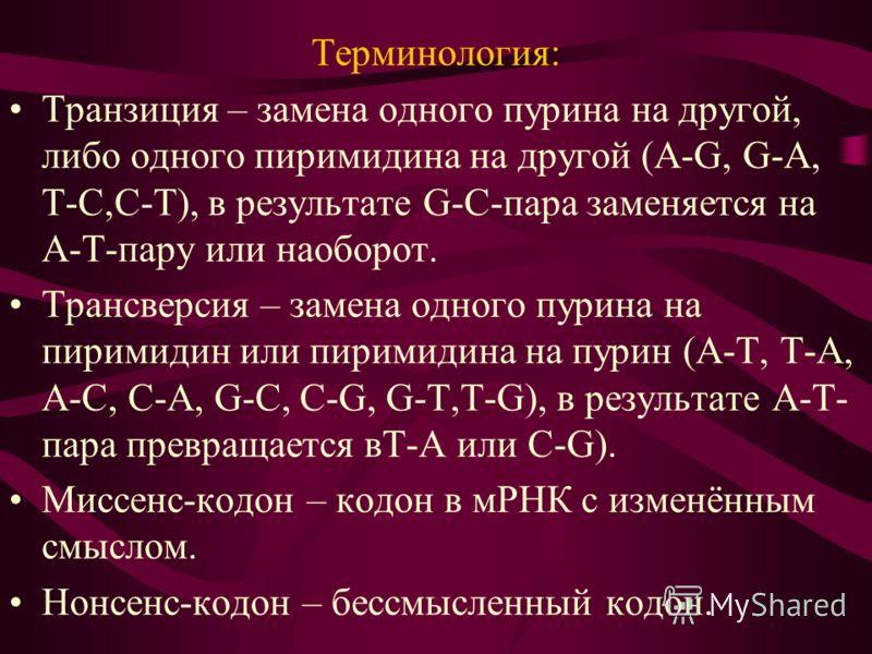 Терминология: Транзиция – замена одного пурина на другой, либо одного пиримидина на другой (A-G, G-A, T-C,C-T), в результате G-C-пара заменяется на A-T-пару или наоборот. Трансверсия – замена одного пурина на пиримидин или пиримидина на пурин (A-T, T