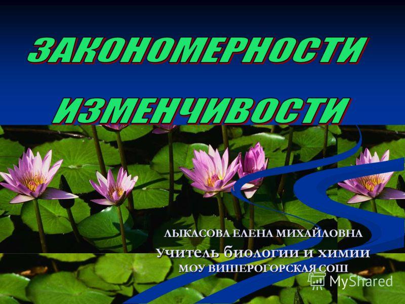 ЛЫКАСОВА ЕЛЕНА МИХАЙЛОВНА У читель биологии и химии МОУ ВИШЕРОГОРСКАЯ СОШ