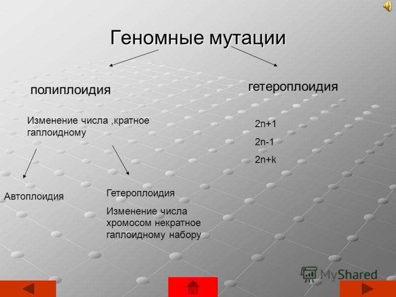 Геномные мутации полиплоидия гетероплоидия Изменение числа,кратное гаплоидному Автоплоидия Гетероплоидия Изменение числа хромосом некратное гаплоидному набору 2n+1 2n-1 2n+k