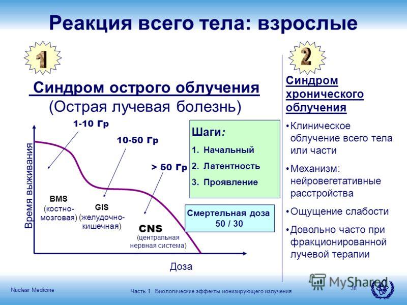 Nuclear Medicine 38 Реакция всего тела: взрослые Синдром острого облучения (Острая лучевая болезнь) Синдром хронического облучения Время выживания Доза Шаги: 1.Начальный 2.Латентность 3.Проявление Смертельная доза 50 / 30 BMS (костно- мозговая) GIS (
