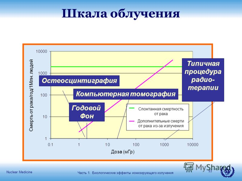 Nuclear Medicine 93 Шкала облучения Годовой Фон Компьютерная томография Остеосцинтиграфия Типичная процедура радио- терапии Часть 1. Биологические эффекты ионизирующего излучения Спонтанная смертность от рака Дополнительные смерти от рака из-за излуч