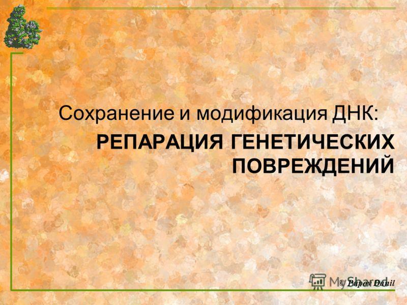 Сохранение и модификация ДНК: РЕПАРАЦИЯ ГЕНЕТИЧЕСКИХ ПОВРЕЖДЕНИЙ © Pupov Danil
