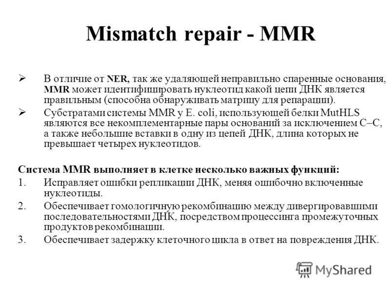 Mismatch repair - MMR В отличие от NER, так же удаляющей неправильно спаренные основания, MMR может идентифицировать нуклеотид какой цепи ДНК является правильным (способна обнаруживать матрицу для репарации). Субстратами системы MMR у E. coli, исполь