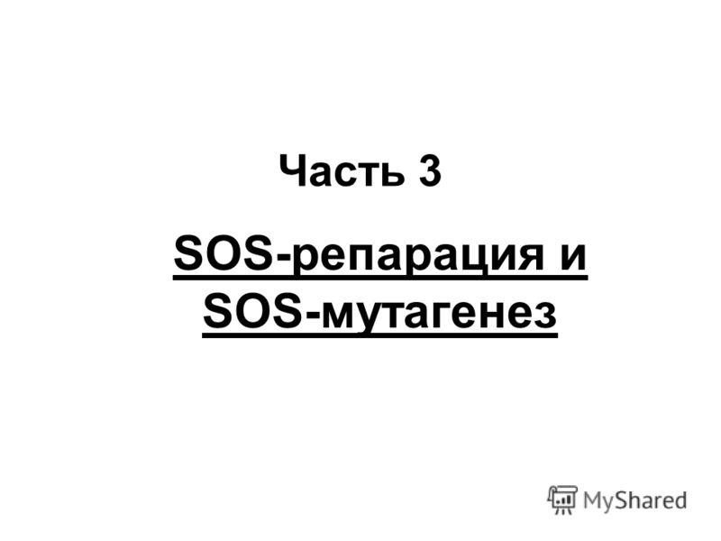 Часть 3 SOS-репарация и SOS-мутагенез