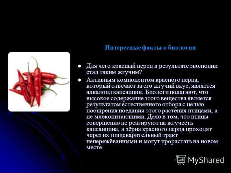 Интересные факты о биологии Для чего красный перец в результате эволюции стал таким жгучим? Для чего красный перец в результате эволюции стал таким жгучим? Активным компонентом красного перца, который отвечает за его жгучий вкус, является алкалоид ка