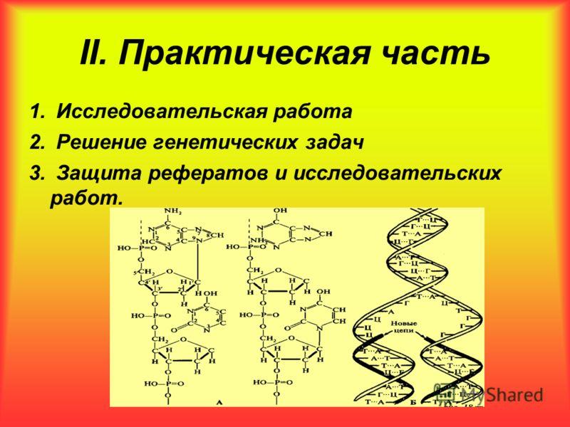 II. Практическая часть 1. Исследовательская работа 2. Решение генетических задач 3. Защита рефератов и исследовательских работ.