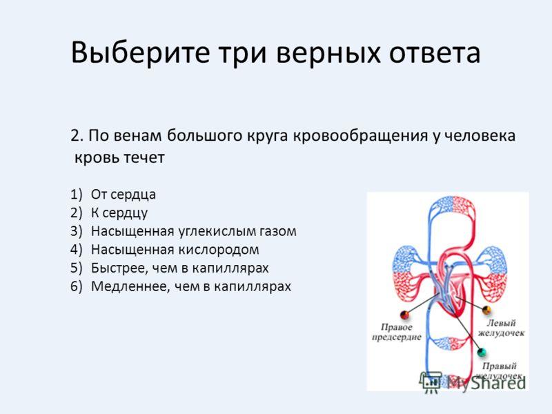 Выберите три верных ответа 2. По венам большого круга кровообращения у человека кровь течет 1)От сердца 2)К сердцу 3)Насыщенная углекислым газом 4)Насыщенная кислородом 5)Быстрее, чем в капиллярах 6)Медленнее, чем в капиллярах