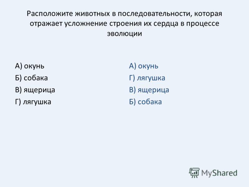 Расположите животных в последовательности, которая отражает усложнение строения их сердца в процессе эволюции А) окунь Б) собака В) ящерица Г) лягушка А) окунь Г) лягушка В) ящерица Б) собака