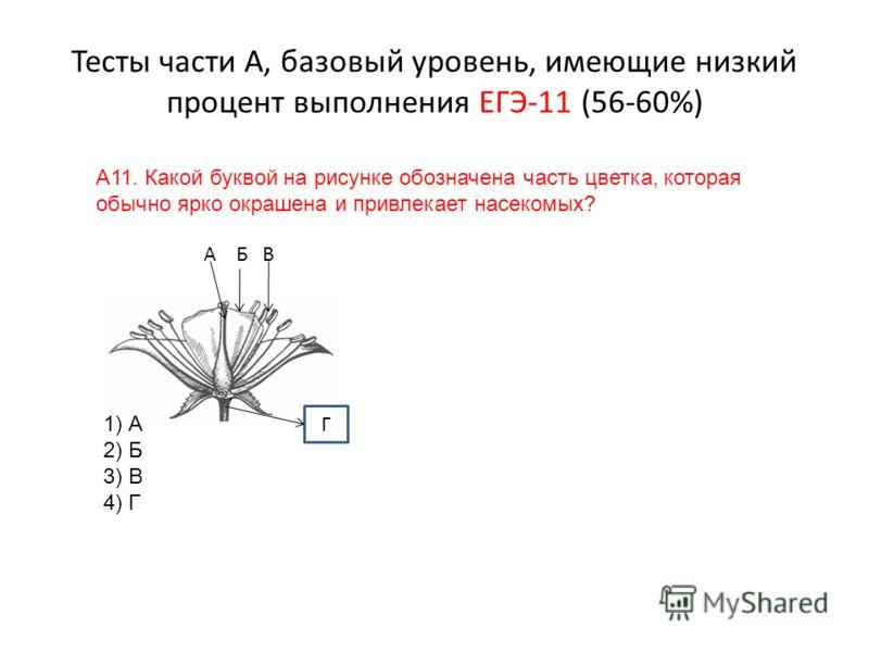 Тесты части А, базовый уровень, имеющие низкий процент выполнения ЕГЭ-11 (56-60%) А11. Какой буквой на рисунке обозначена часть цветка, которая обычно ярко окрашена и привлекает насекомых? А Б В 1) А 2) Б 3) В 4) Г Г