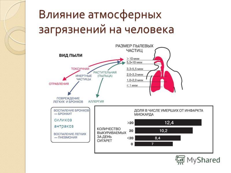Влияние атмосферных загрязнений на человека силикоз антракоз