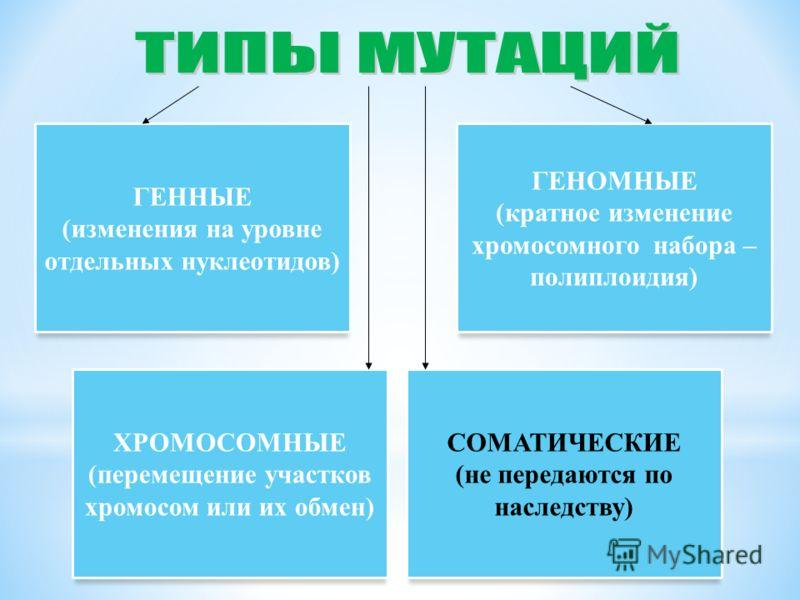 ГЕННЫЕ (изменения на уровне отдельных нуклеотидов) ГЕНОМНЫЕ (кратное изменение хромосомного набора – полиплоидия) ХРОМОСОМНЫЕ (перемещение участков хромосом или их обмен) СОМАТИЧЕСКИЕ (не передаются по наследству)