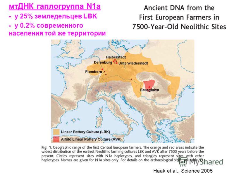 Haak et al., Science 2005 мтДНК гаплогруппа N1a - у 25% земледельцев LBK - у 0.2% современного населения той же территории