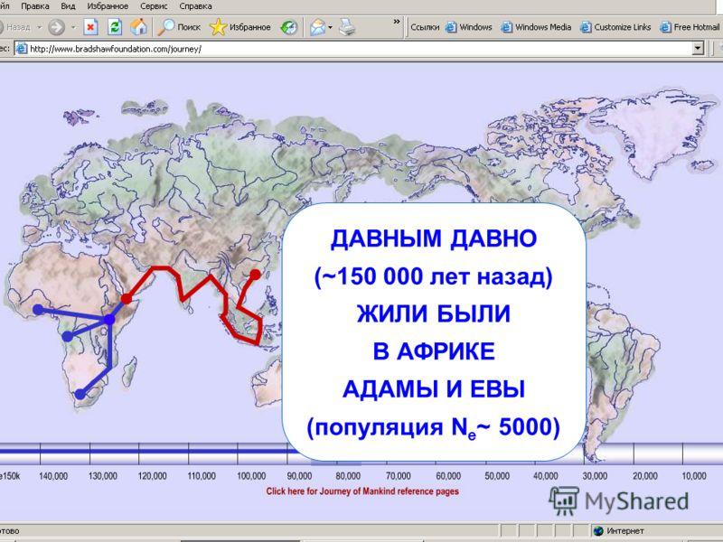 ДАВНЫМ ДАВНО (~150 000 лет назад) ЖИЛИ БЫЛИ В АФРИКЕ АДАМЫ И ЕВЫ (популяция N e ~ 5000)