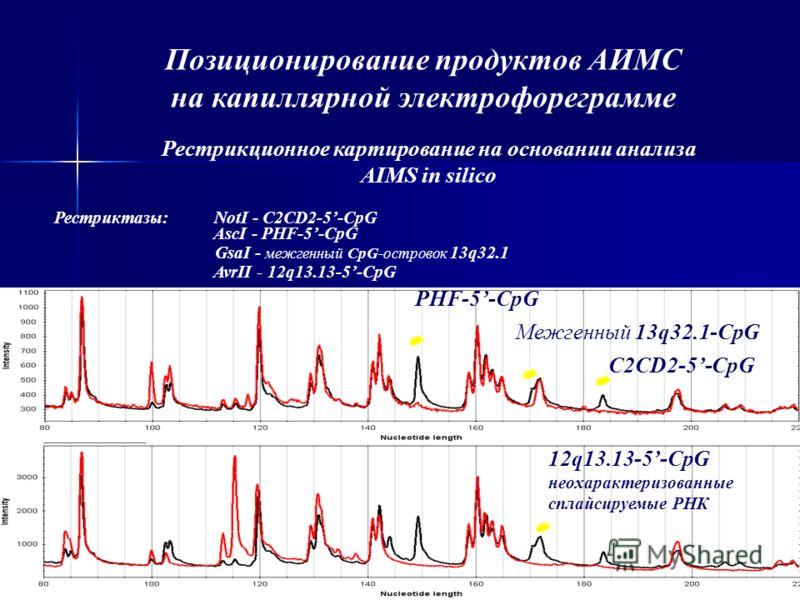Позиционирование продуктов АИМС на капиллярной электрофореграмме Рестрикционное картирование на основании анализа AIMS in silico C2CD2-5-CpG Межгенный 13q32.1-CpG PHF-5-CpG 12q13.13-5-CpG неохарактеризованные сплайсируемые РНК Рестриктазы:NotI - C2CD