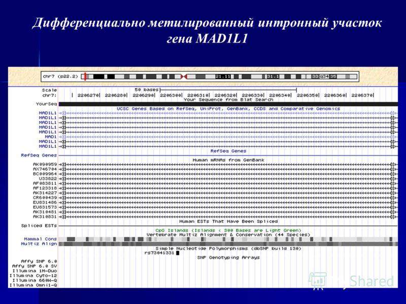 Дифференциально метилированный интронный участок гена MAD1L1