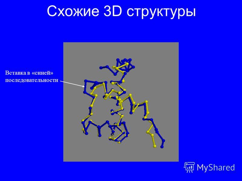 Схожие 3D структуры Вставка в «синей» последовательности